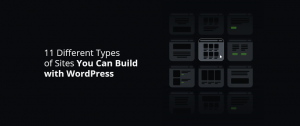 11 Different Types of Sites You Can Build with WordPress - DevriX
