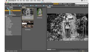 Copying and pasting raw settings