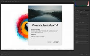 Adobe August 2019_New update for Lightroom Classic and Camera Raw: GPU  support, new workflow added – ElectroDealPro