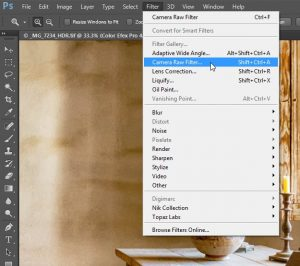 Camera Raw Integration in Photoshop CC - Mike Hoffman | TipSquirrel