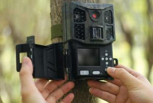 Top 5 Best Motion Activated Wildlife Cameras In 2021 (Fail-proof) -  OpticsMax