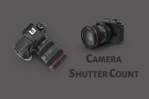 Camera Shutter Count- Did You Exhaust Yours? - PhotographyAxis