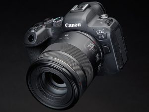 Canon EOS R6 Review: not the hybrid king, but a great photographers' camera:  Digital Photography Review