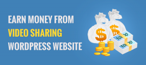 How To Earn Money From Your Video Sharing Website   InkThemes