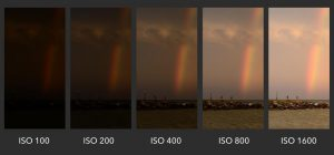 What is ISO? Understanding ISO for Beginners - Photography Life