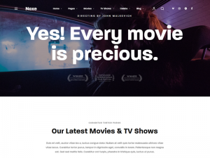 10+ Best WordPress Movie Themes for Cinema and Movies