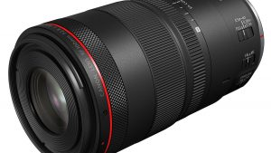 New Canon RF 100mm F2.8L Macro IS USM lets you adjust bokeh on-the-fly:  Digital Photography Review