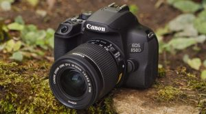 Recommended DSLR Cameras for Beginner in 2021 - Mile How To