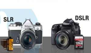 The Difference Between SLR and DSLR Must Be Known Before Buying a Camera -  Pelikan