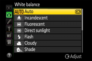 What is White Balance in Photography?
