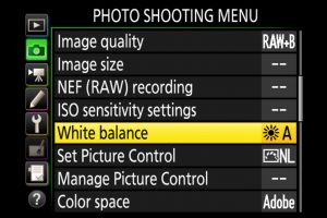 How To Control & Get Perfect White Balance In-Camera
