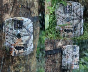 Why Is My Trail Camera Not Taking Pictures? - OpticsMax