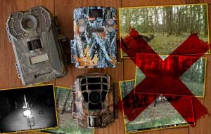 Why is my Trail Camera not Taking Pictures? How to Fix it!