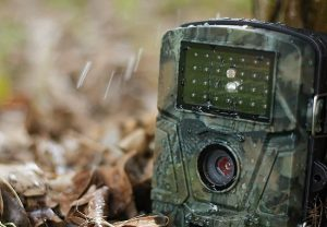 The 11 Best Trail Cameras Reviewed - Hunting, Wildlife Monitoring and Home  Security - Outdoor Empire