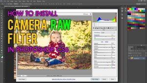 How to install camera raw filter in Photoshop CS6   Camera raw, Photoshop  cs6, Blur photo background