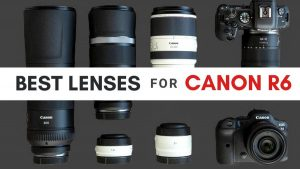 Best Lenses for Canon EOS R6 - Canon Camera News