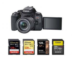 Best Memory Card for Canon EOS Rebel T8i – Accessories Tested