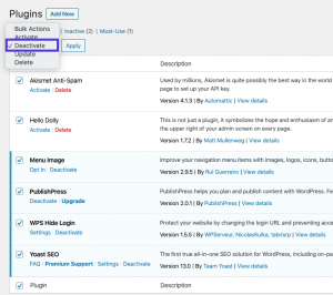 How to Downgrade Your WordPress Site (Throubleshooting Plugin and Theme  Issues)