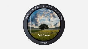 What is a full frame camera and why should you choose one? - Coolblue -  anything for a smile