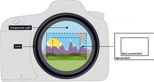 The Ultimate Guide to Crop Factor