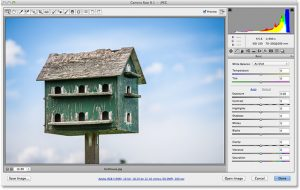 Cropping Images In Adobe Camera Raw 8