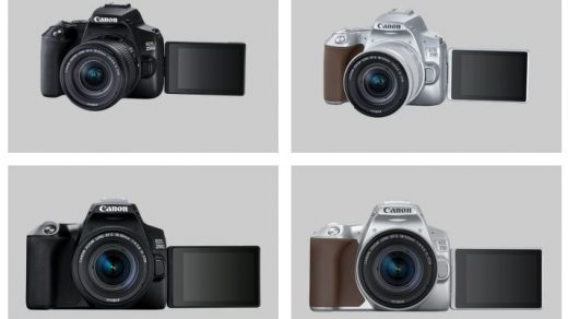 Canon EOS 250D, the world's lightest DSLR with a moveable screen |  Professional Photo Magazine