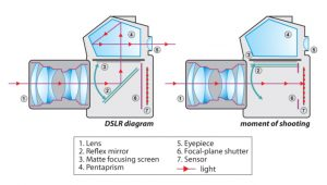 DSLR Camera – How It Works – matthewcrossleyphotography