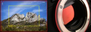 Full Frame vs Cropped Frame Cameras - Tim Ford Photography & Videography