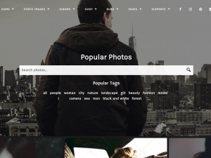 10+ Best WordPress Themes for Stock Photography | Codeless