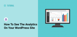 How to See the Analytics on Your WordPress Site