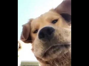 When You Accidentally Open the Front Camera - YouTube