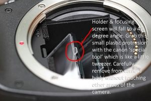 Cleaning your DSLR sensor & viewfinder | What I see, How I see...