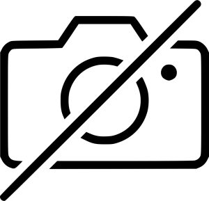 No Camera Capture Picture Image Photo Svg Png Icon Free Download (#520961)  - OnlineWebFonts.COM