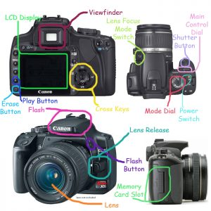 Labeled SLR Camera Parts and Controls   Commtech