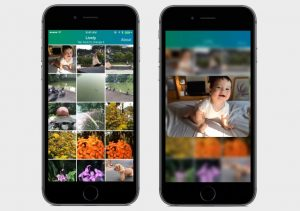 Lively Lets You Trim Your iPhone's Live Photos, Pick Your Best Shot From  The Video | TechCrunch