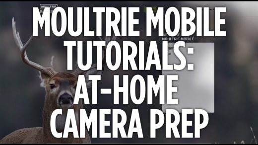 Moultrie Mobile Tutorials: How to Set Up Your Camera & MV1 Modem - YouTube