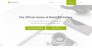 Imagely NextGEN Gallery Pro Review 2021: (Detailed Review)