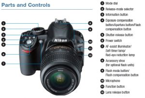 Nikon D3100 Camera Reviews to Help you Maximize the Usage of Your D3100    Buy a Dslr Camera