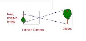 The image formed by a pin-hole camera is always inverted . Why ? Light,  Shadows and Reflections-Science-Class-6