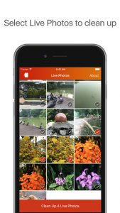 """Lean"""" Lets You Clean Up Unwanted Live Photos To Free Up Space On Your New  iPhone   TechCrunch"""