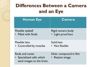 Section 4.1: Image Formation in Eyes and Cameras - ppt download