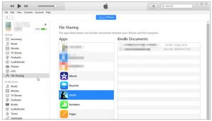 How to Transfer Videos from PC to iPhone Camera Roll Easily