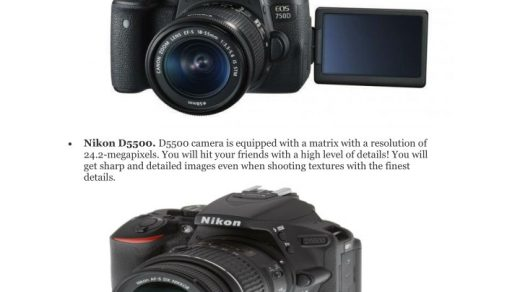 PPT - DSLR Cameras for Beginners PowerPoint Presentation, free download -  ID:7655192