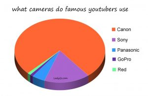 What cameras do famous Youtubers and celebrities use? - Lady Qs