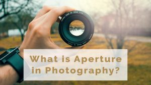 What is Aperture in Photography? F-Stops, Depth of Field