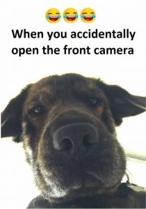 dopl3r.com - Memes - When you accidentally open the front camera