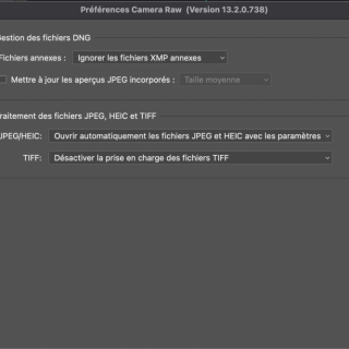 Solved: Stuck in Camera Raw Filter - Adobe Support Community - 10760665
