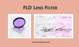 FLD Filter – Do You Really Need One? - PhotographyAxis