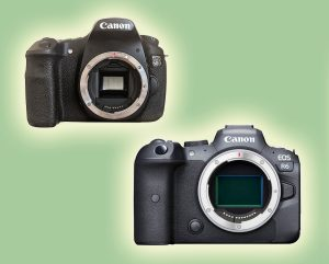 The Big 60D Upgrade: Time to Go Mirrorless? – Andrew Murray Photo