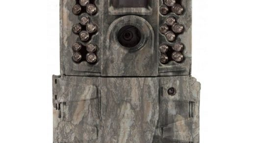 Top 10 Best Trail Cameras for Hunting | Under Reviews